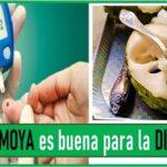 la chirimoya sirve para la diabetes
