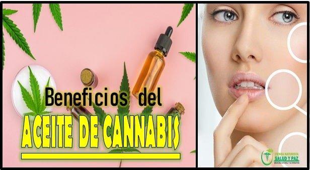 5 beneficos del aceite de cannabis para la piel