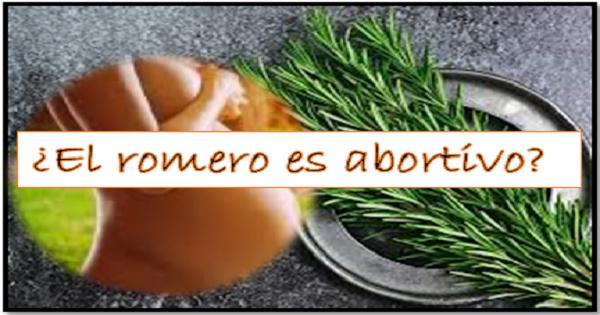 el romero es abortivo