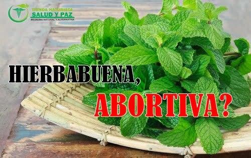 la hierbabuena es abortiva